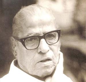 श्रीपाद नारायण पेंडसे, १९९६